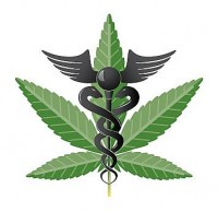 BATFE med marijuana 200x194 Interesting News for Medical Marijuana Patients